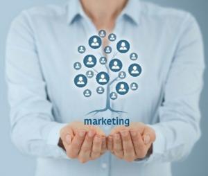 The Marketing Protocol